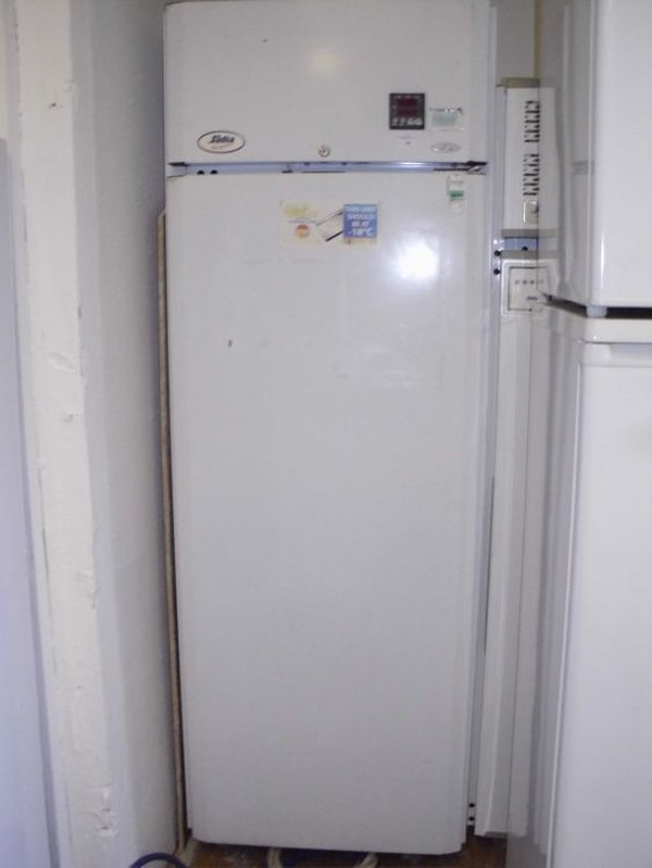 Sadia Freezer