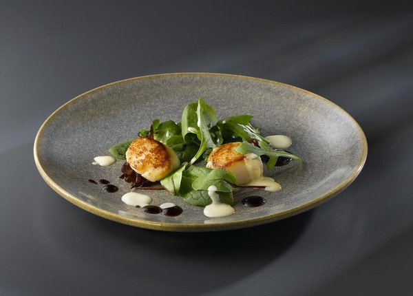 Dudson Evolution Crockery