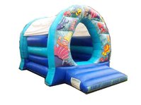 10ft x 13ft Sea themed bouncy castle