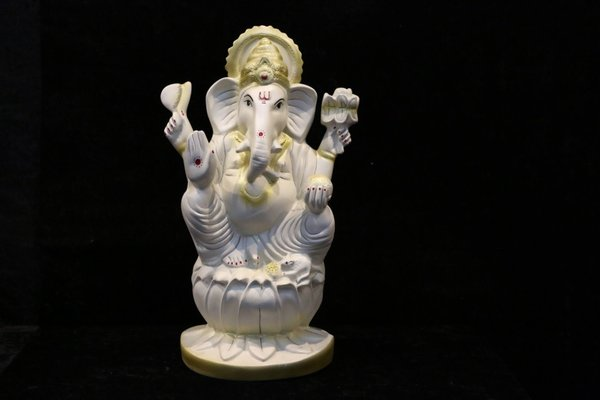 Fibre Ganesh Jis