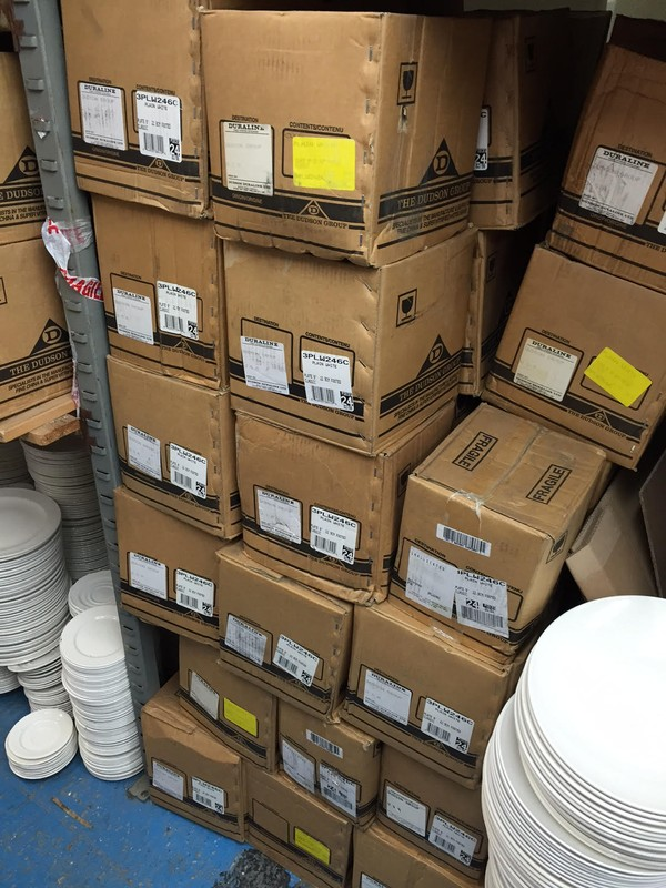 "Boxed 9"" Dudson Best Plates"