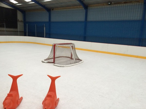 EZ GLIDE 350 Synthetic Ice Rink  for sale