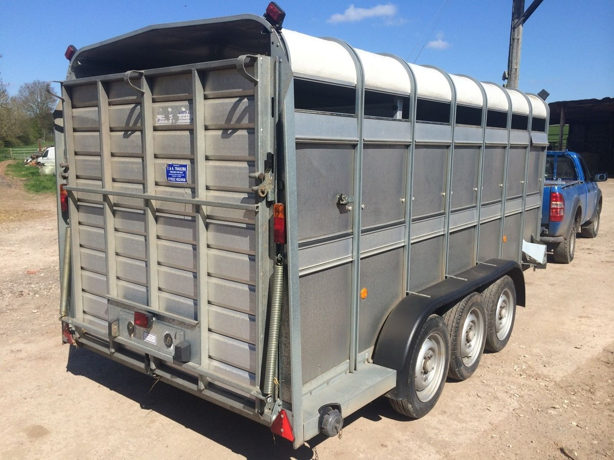 secondhand trailers livestock ifor williams ta510 14ft tri axle livestock trailer west. Black Bedroom Furniture Sets. Home Design Ideas