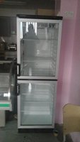 2 Door Upright Double Display Fridge