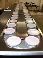 Sushi Conveyor Belt Foe Sale