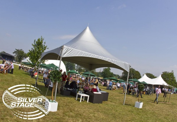 WANTED: Leg Pole for Span-Tech Chinese Hat 5x5m Marquee