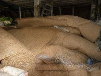 Approx 50 Bales Coconut Matting