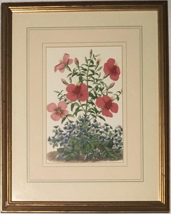 Used deco framed wall print