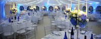 New Ice Chiavari chairs