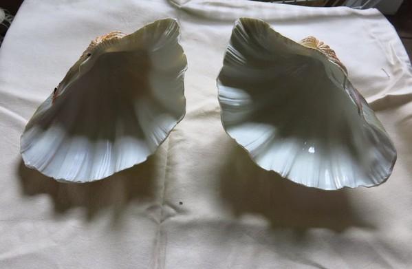 Artificial Shells