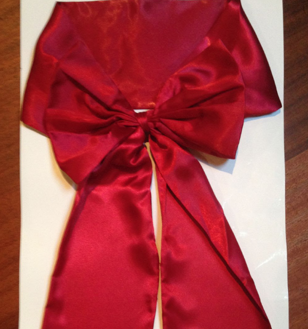 Red Silk bows