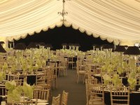 12m Ivory Reveal Curtain for sale