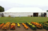 50Ft Wide marquee for sale