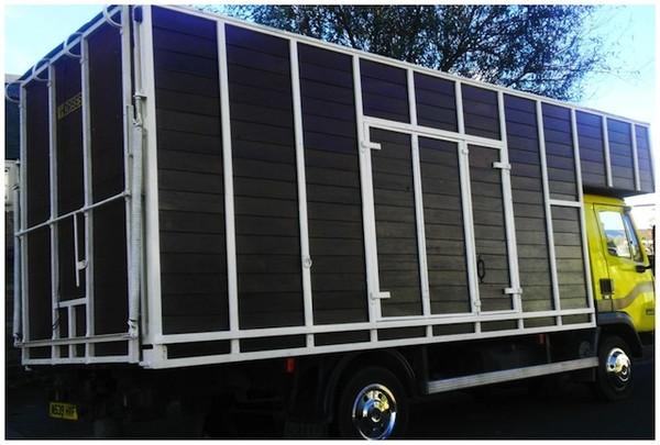 Leyland DAF Horse Box Camper Traveller Festival Trader Market Truck