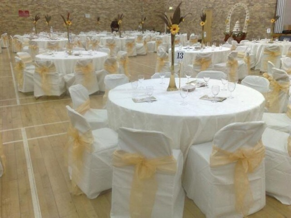Polyester chair covers