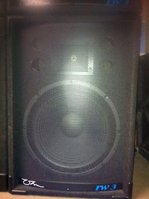 Ohm RW3 Full Range PA Speakers