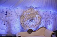 Unusual rose themed backdrop