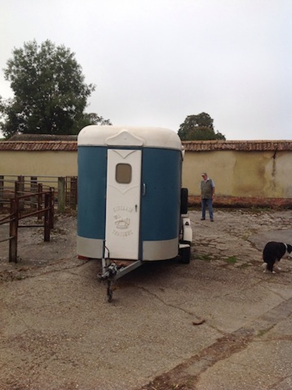 Sinclair Large Horse Box Trailer