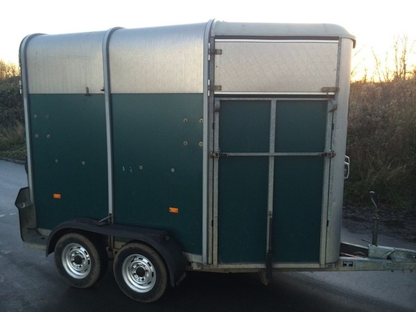 Buy Used Ifor Williams HB 505 Hunter Horse Trailer