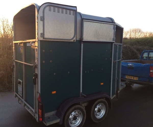 Ifor Williams HB 505 Hunter Horse Trailer for sale