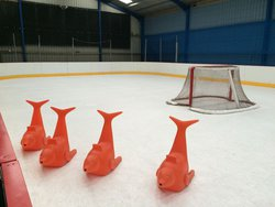 EZ GLIDE 350 Synthetic Ice Rink