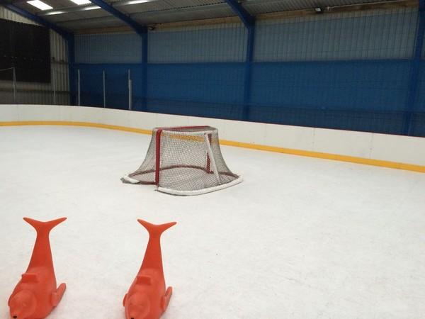 Used Hockey Skates >> Ice Rink Equipment | Ice Skating Aids | EZ Glide 350 ...