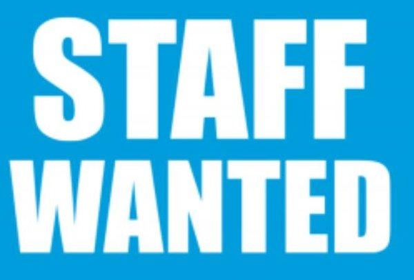 Marquee staff jobs
