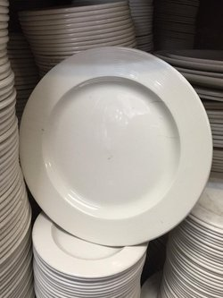 New Eclipse dudson seconds crockery with slight embossed edge