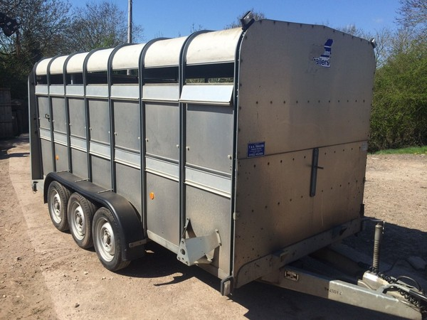 Sheep or pig trailer for sale