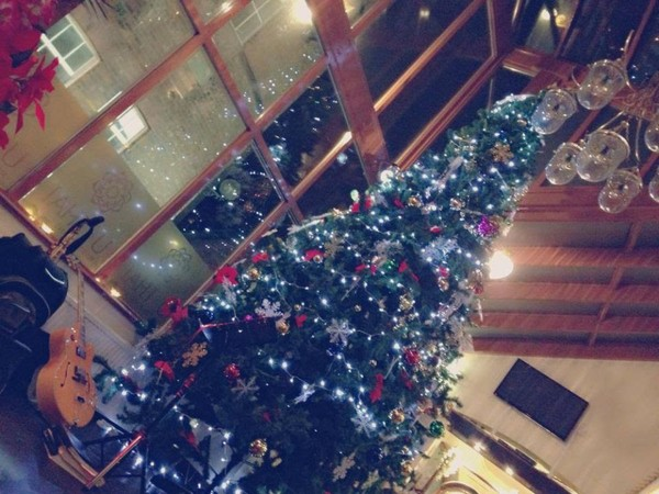 Commercial 4.5 metre Indoor Christmas Tree