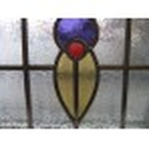 1930's Tulip 3 pattern stained glass detail, Cheshire