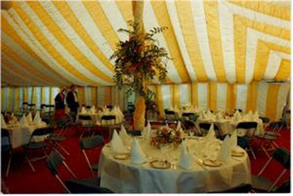 Used Traditional Marquee Linings for sale