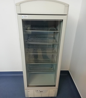 Upright Display Freezer