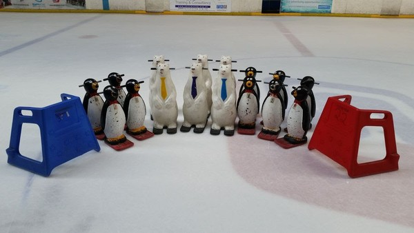 10x Penguins Skating Aids