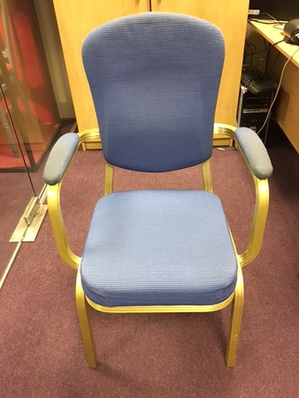 Burgess  Blue Patterned Chair with Gold Frame and Arm Rests