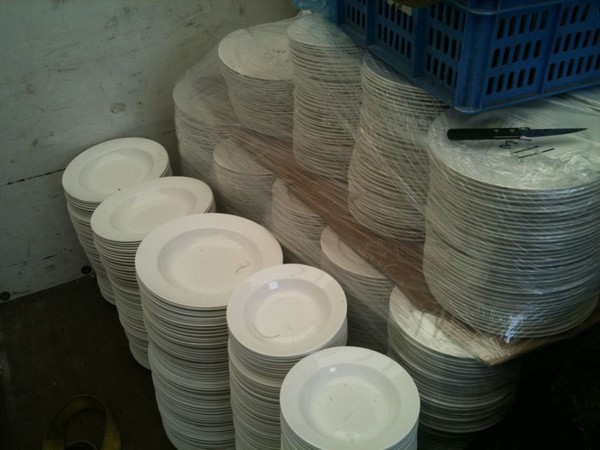 Dudson seconds fine china