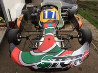 2010 Rotax Storm Junior Max Go Kart