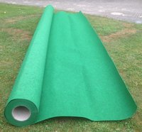 Unused Green Carpet