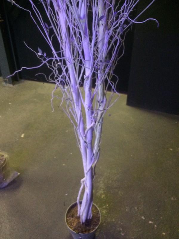 5x Tall Artificial Decorative Trees