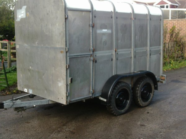 Ifor Williams live stock trailer
