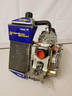 Senior Rotax FR125CC Kart Race Engine With PD Barrel