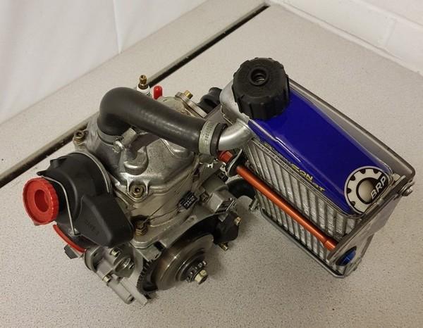 Senior Rotax FR125CC Kart Race Engine