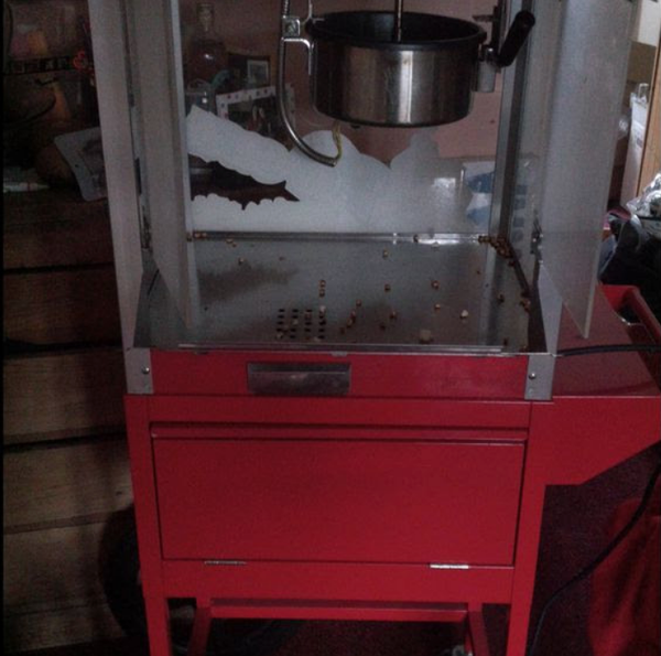 Popcorn cart for sale
