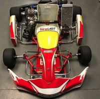 Secondhand Birel Art 2015 Go Kart