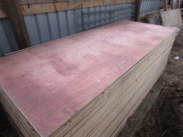 Sheets Of Faced Ply
