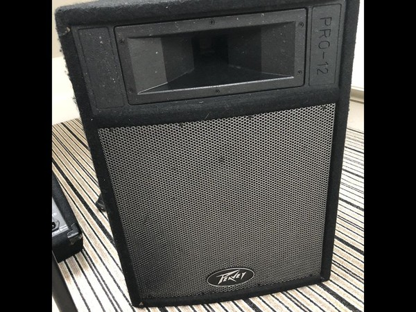 Peavy Pro 12 speakers