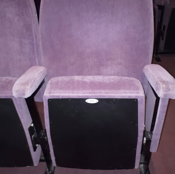 Comfortable Folding Cinema seats