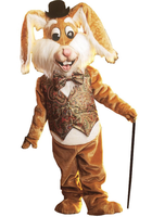 Rabbit costume for sale