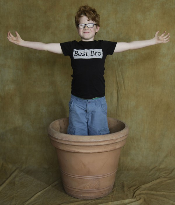 Flower pot prop
