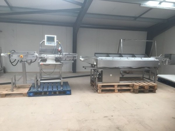 Chicken grader for sale